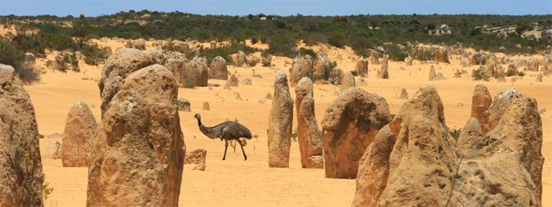 Pinnacles & Emu